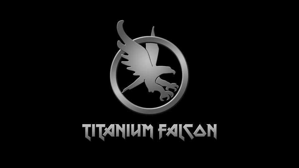 Titanium Falcon Smart Ring